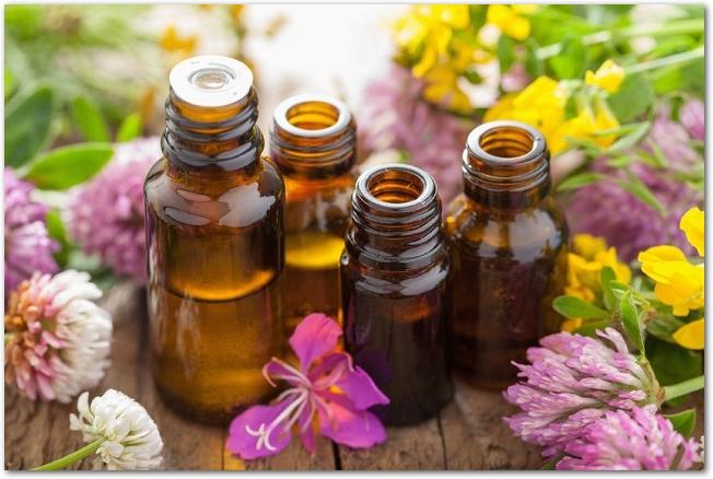 ハーブや花に囲まれて置かれているアロマオイルの小瓶